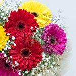 colourful gerbera daisy bouquet