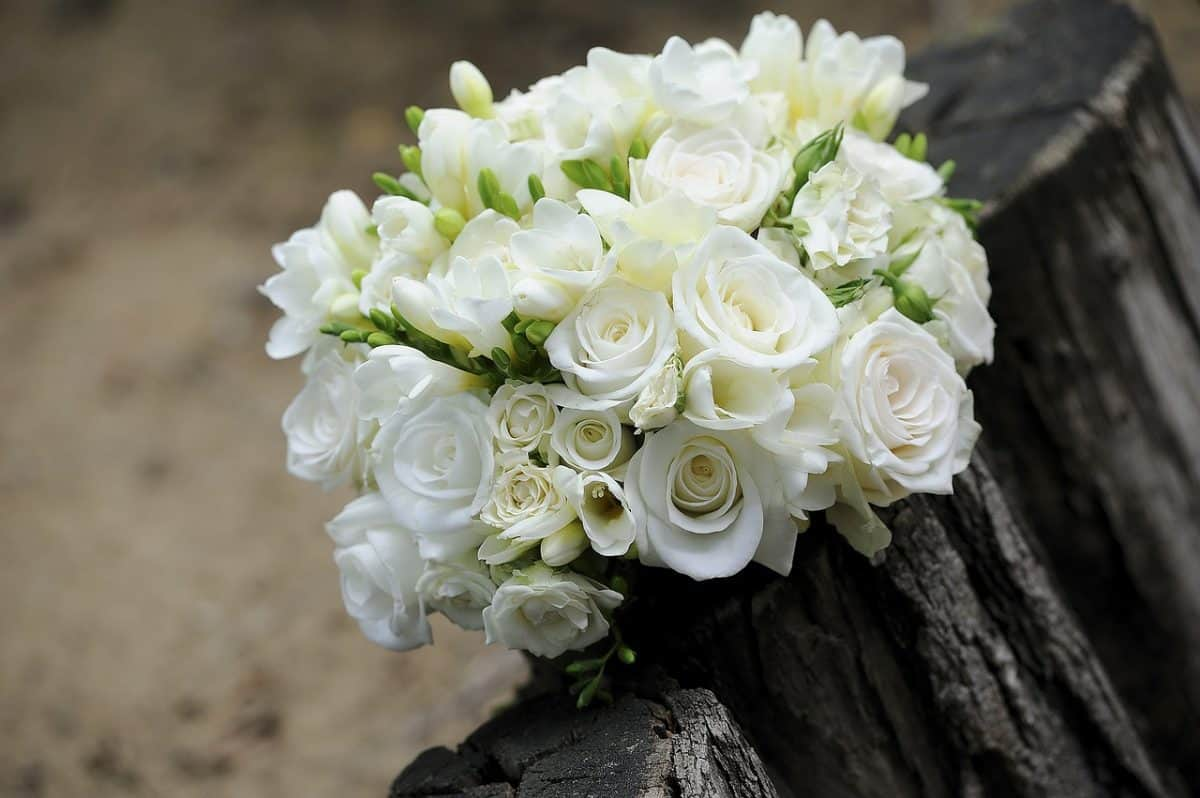 Bridal Bouquet Styles A Guide Yvonne Cassidy Weddings